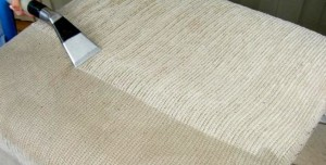 upholstery-cleaning-pinecrest 111