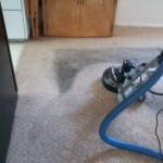 Roto Carpet Cleaning